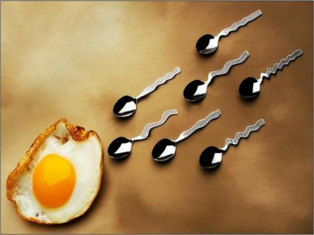 Как улучшить качество спермограммы для зачатия народными средствами